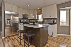 contemporary-kitchen-with-quartz-countertops-painted-kitchen-cabinets-and-white-cabinets-i_g-IS9xn5x5o0vyil0000000000-iuLSr